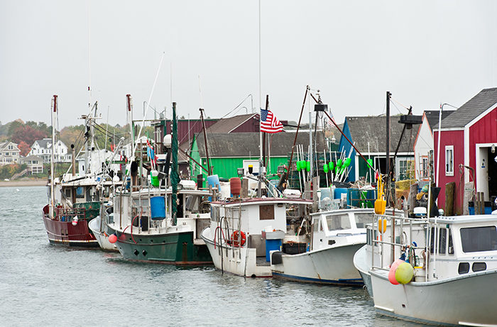 Line of colorful lobster boats, Portland, Maine.